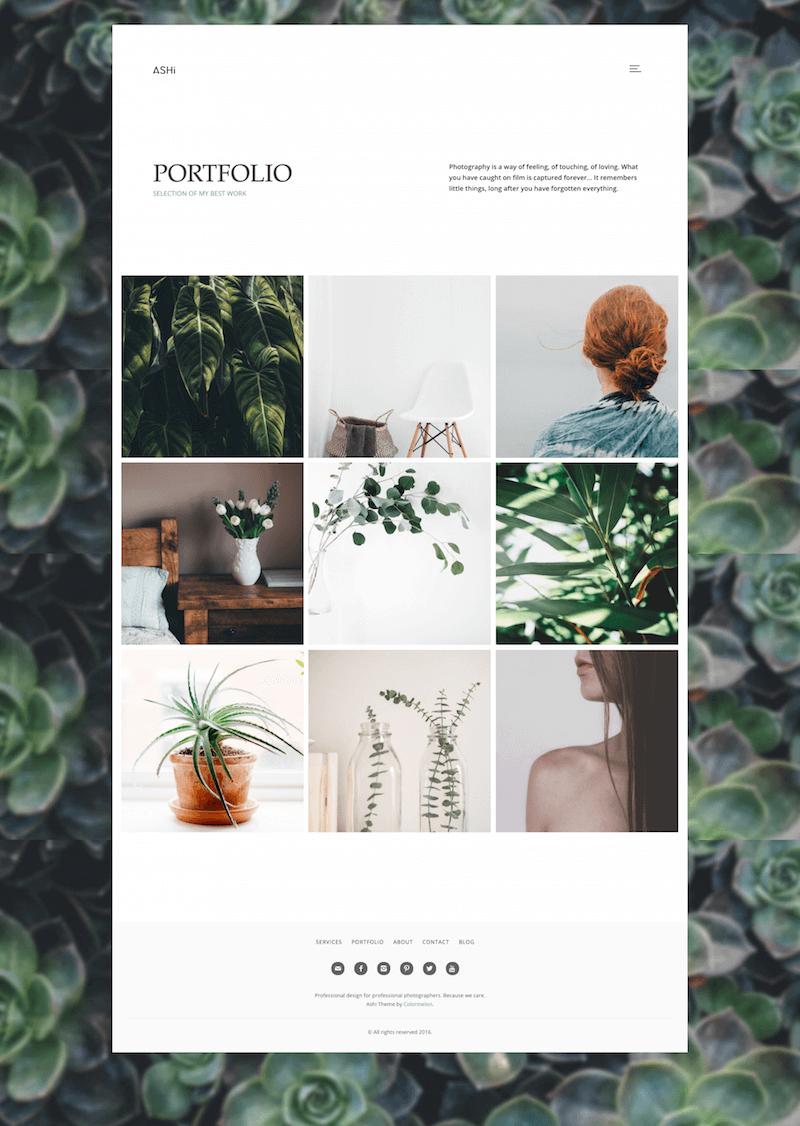 ashi-photography-theme