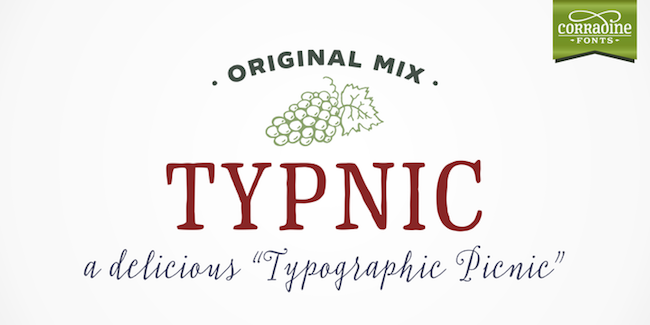 Typnic Font