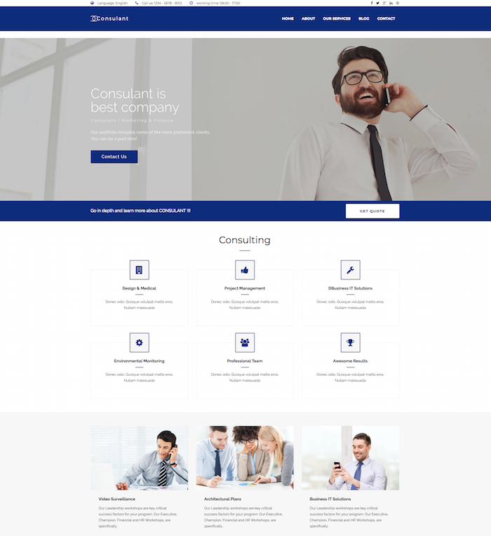 Consulant Business Drupal Theme