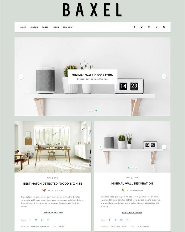 Baxel Minimal Blog Theme for WordPress
