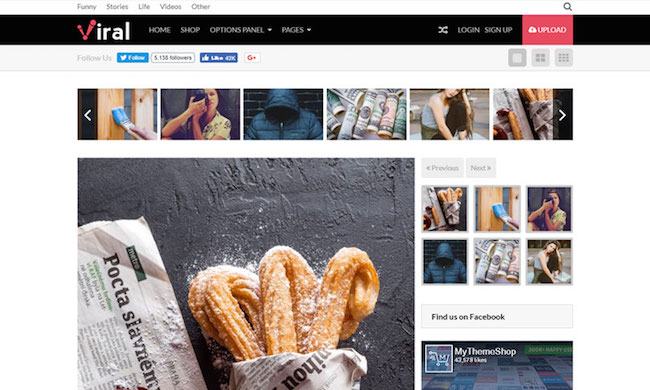 best-viral-wordpress-themes