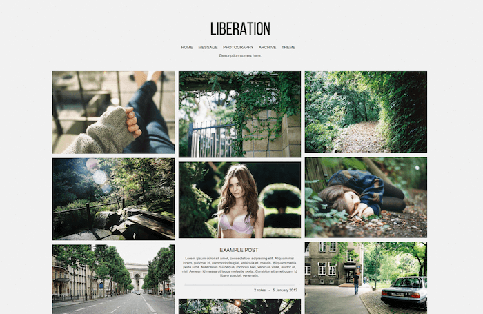 Liberation Tumblr Theme