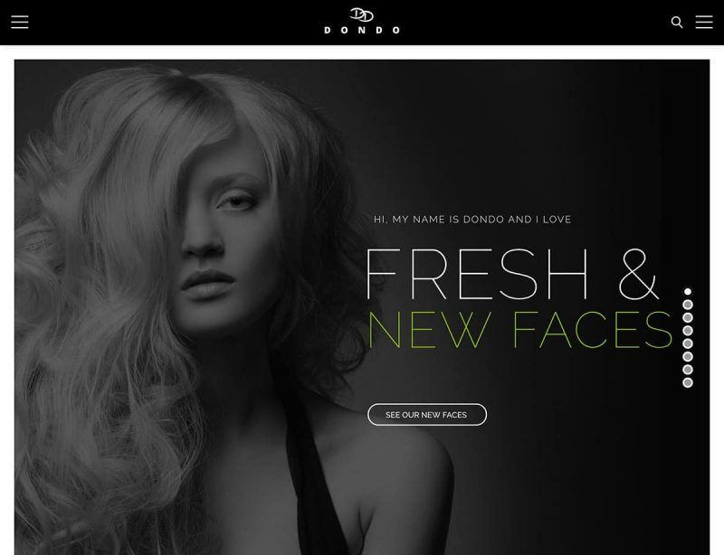 Dondo Fashion WordPress Theme