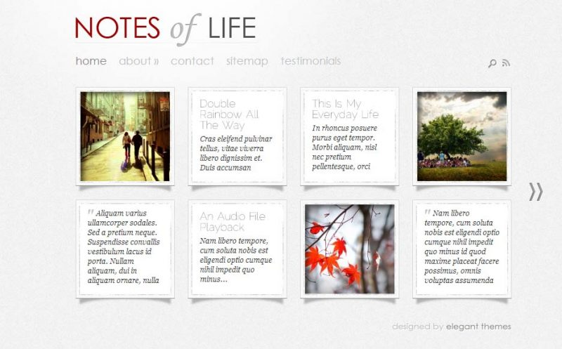 Daily Notes Tumblr Type WordPress Theme