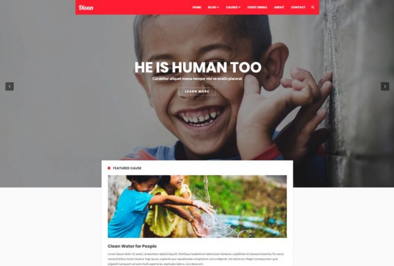 Divan Non Profit WordPress Theme