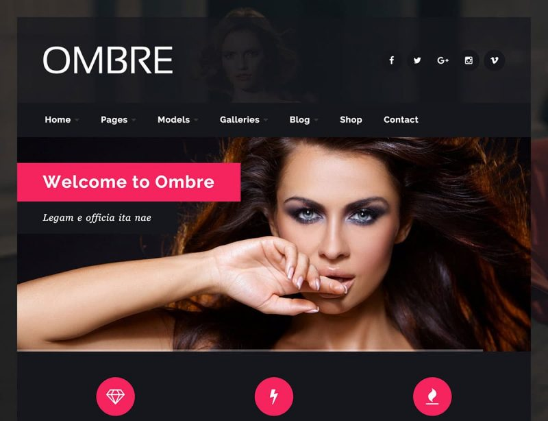 Ombre Model Agency WordPress Theme