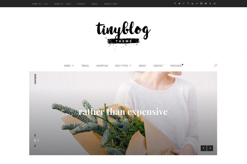 TinyBlog Tumblr Like WordPress Theme