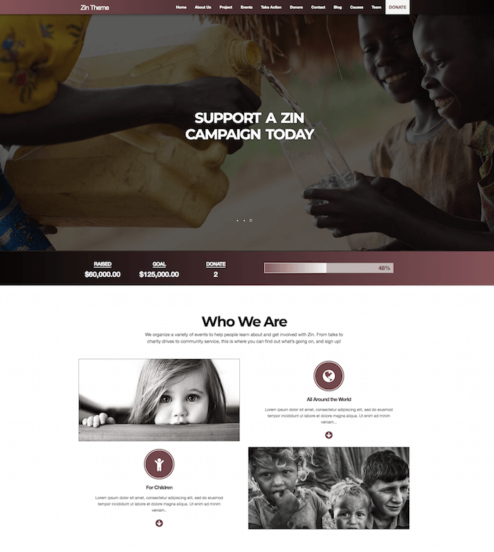 Zin Multipurpose Nonprofit Theme
