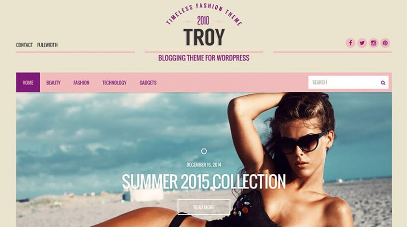 Troy Tumblr Style WordPress Theme