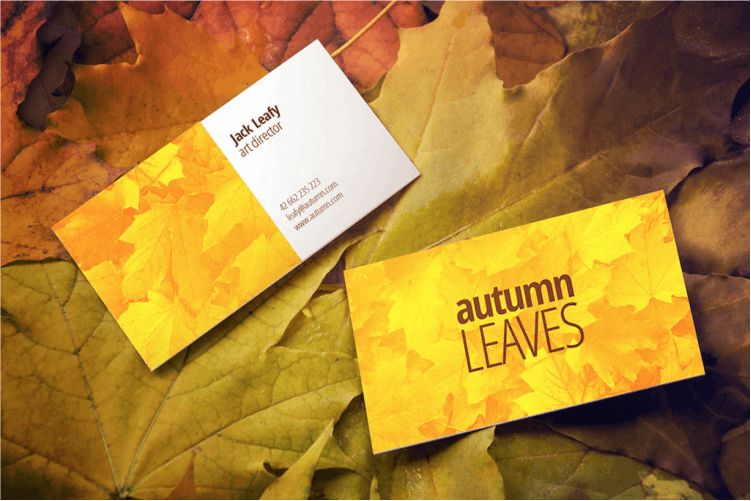Best Free PSD Business Card Mockups
