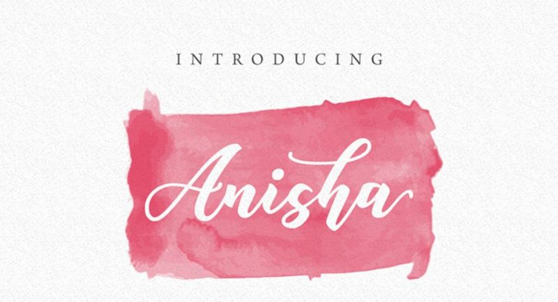 Anisha WordPress Theme
