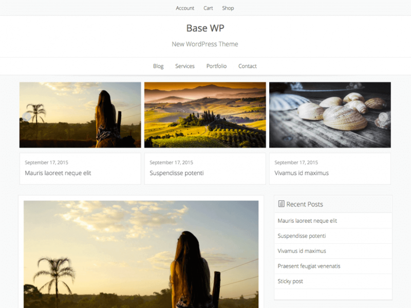 Base WP WooCommerce Theme