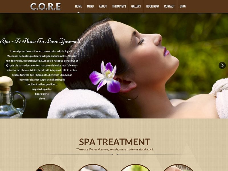 Core Beauty Salon WordPress Theme