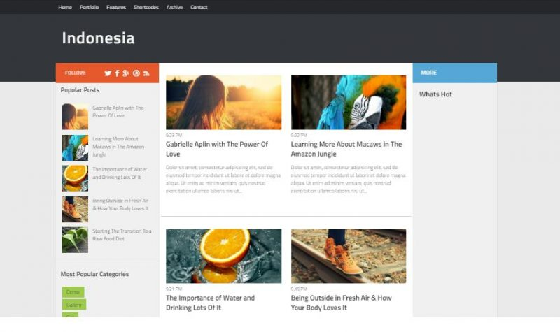 Indonesia Magazine Blogger Template