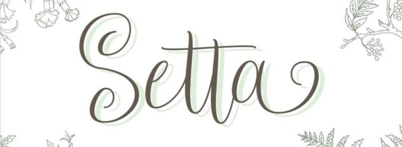 Setta Script Font