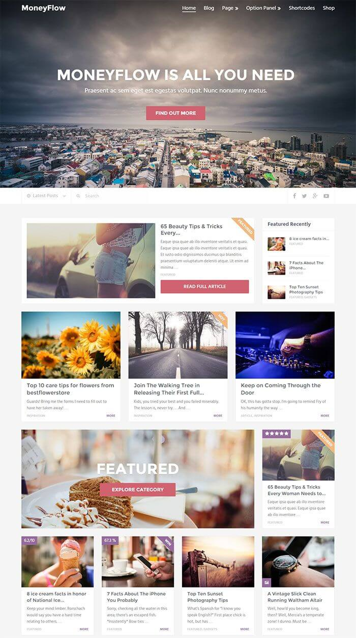 MoneyFlow WordPress Theme