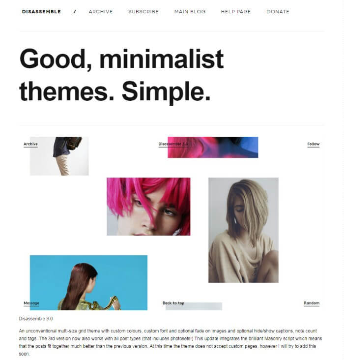Disassemble Tumblr Theme