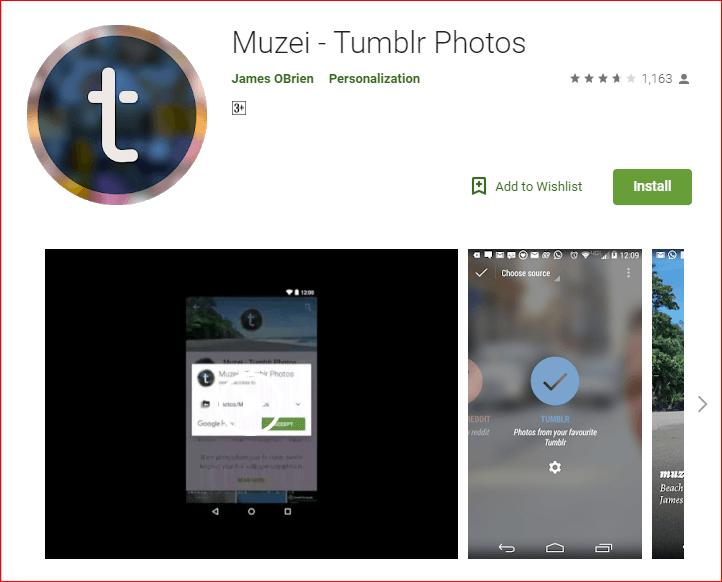 Muzei-Tumblr Photos