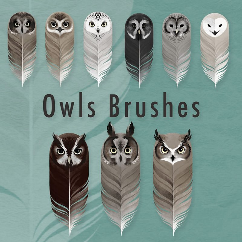 Owls Brushes