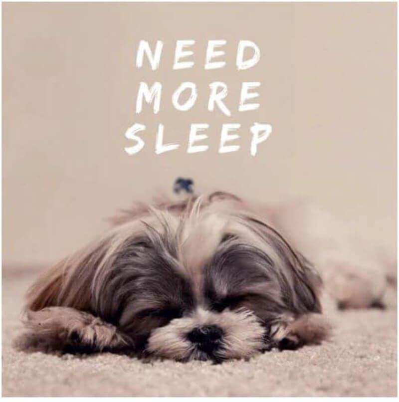 Need More Sleep