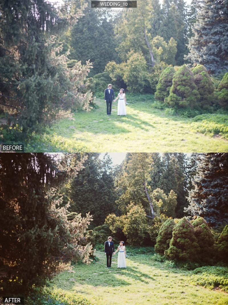 Pro Wedding Presets